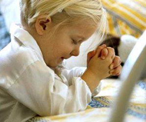 因埃洛希姆上帝的教导我才明白我的人生